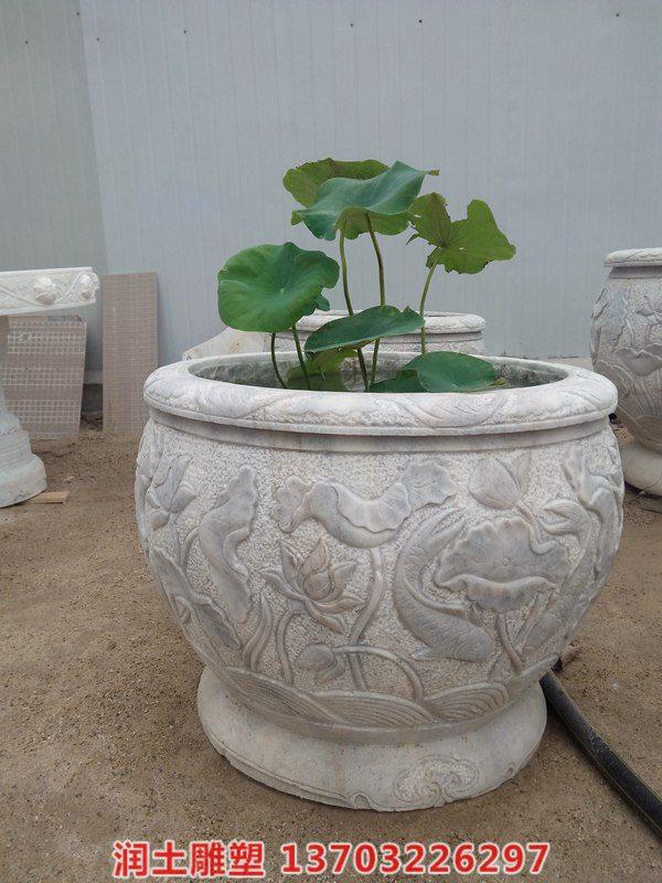鱼缸花盆 (10)